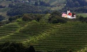 Reiseziel Slowenien, Haloze Zagorje